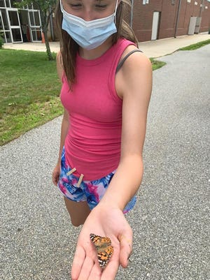 Brook holds a painted lady butterfly (scientific name: vanessa cardui).