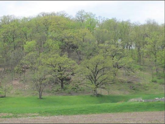 Spring at Helmenstine Hillside Vue Farm restored with