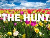 THE HUNT: Spring Bloom