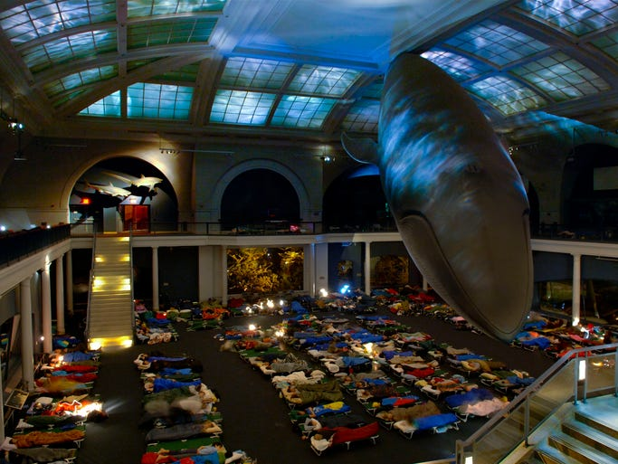 Museums across the USA offer programs that combine overnight stays with fun, educational activities. At New York's American Museum of Natural History, patrons sleep beneath the Blue Whale in the Milstein Hall of Ocean Life.