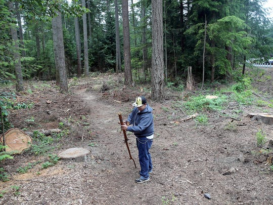 Chris Lee of Port Orchard hikes in a logged area at