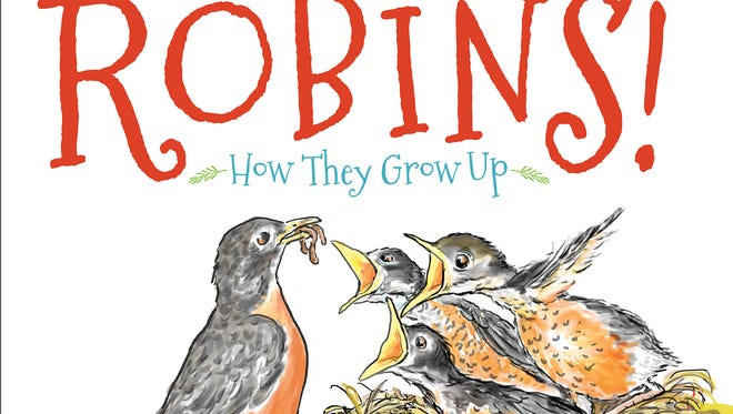 'Robins! How They Grow Up'
