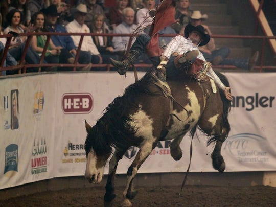 The crowd cheers on Mason Clements as he rides Outa Sight in the bareback riding event at the rodeo on Friday.