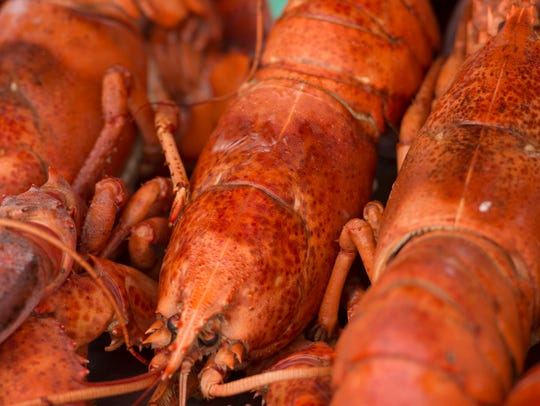 The Martin County Shrimp and Lobster Festival is this weekend at Memorial Park in Stuart.