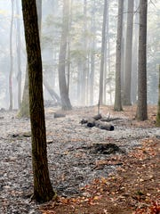 The ground is charred and covered in ash where firefighters created a fire line to protect a home in Broad River from the Party Rock fire.