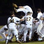 The Hendersonville High School baseball team celebrates after winning the District 9-AAA Tournament with Wednesday evening's 2-0 victory over visiting Wilson Central.