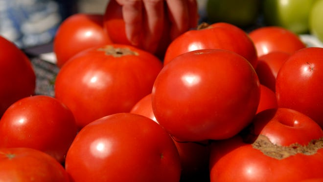 A customer reaches for tomatoes grown by Jackson's Produce at the Grey Street Farmer's Market located downtown on the 400 block of Grey Street.  May 19, 2016