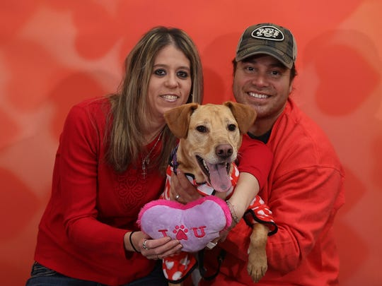 Dixie the Yellow Lab poses with Christina Muller-Maldonado and Eric Maldonado for Valentine's Day at Crown Veterinary Specialists in Lebanon. February 6, 2016, Lebanon, NJ.