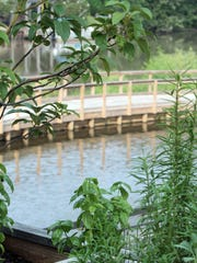 Fresh herbs, used in some of the dishes at Ruffino's, frame a view of the Vermilion River. Ruffino's will be offering special menu items and fun, build-your-own pizzas for the kids on Mother's Day
