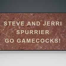 What the Steve Spurrier brick will look like.