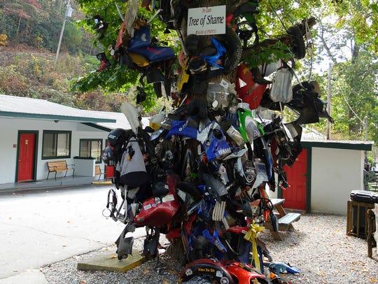"""""""Tree of Shame"""" at Deals Gap, North Carolina, on """"The"""