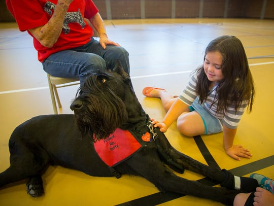 7-year-old Candrina Grado pets Giant Schnauzer therapy