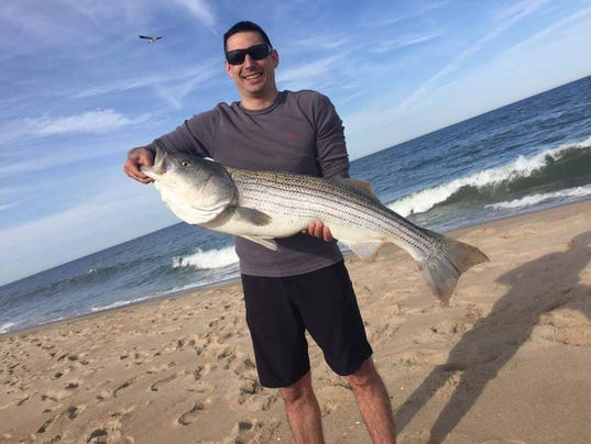 Delaware regional fishing report for Indian river inlet fishing report