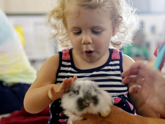 Before you can pet a bunny at the York Fair petting zoo, you'll need to pay admission. Here's ticket prices and specials for every day of the fair.