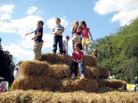 Brown's Orchards and Farm Market Apple Fall Fun Day is Sept. 26.