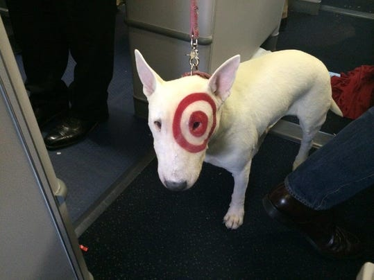 Target mascot bullseye flies first class What kind of dog is the target mascot