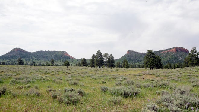 "In this June 22, 2016, photo, the ""Bears Ears"" buttes are shown near Blanding, Utah. U.S. Interior Secretary Sally Jewell is visiting the area this week for a fact-finding mission to meet with proponents and opponents marking the latest indication the Obama administration is giving serious consideration to the ""Bears Ears"" monument proposal that has become the latest battleground in the Western public lands debate."