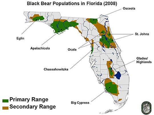 Florida bear range (2008 figures)