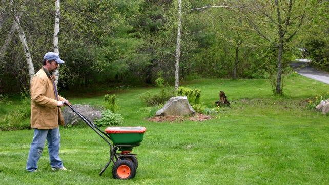 Fertilize-the-lawn