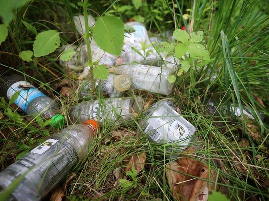 Gatorade bottles lay among overgrown weeds along Newtown Creek in Horseheads.