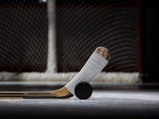 Hockey Puck, Stick, and Net (landscape)