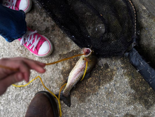 2-YDR-KP-040216-trout