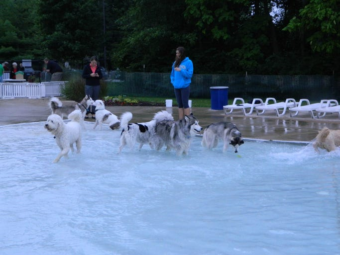 See who Eye Spy caught on camera at the third annual Pooch Plunge on Tuesday, August 11th, 2014.