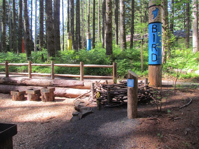"""This year Silver Falls State Park unveils the first """"natural play"""" area for children ever constructed in an Oregon state park."""