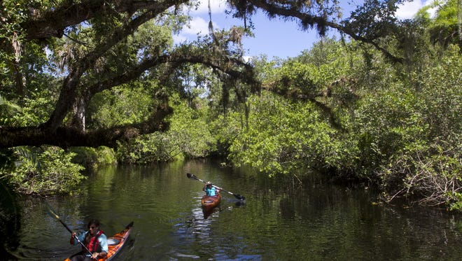 Brandy Minchew of the College of Life Foundation leads John Sutton of London on a short kayak tour of the Estero River.