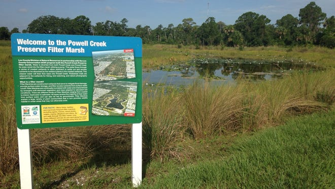 Powell Creek Preserve in North Fort Myers, a Conservation 20/20 property, is home to a filtration marsh Lee County is using to help nitrogen loading in the Caloosahatchee River estuary area.
