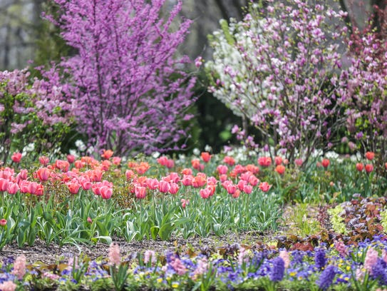 Flowers and trees bloom around the green house at the