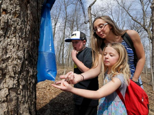 Jennifer McDonough and her children Jack and June check out the maple trees to be tapped at Wehr Nature Center's Maple Sugar Days in 2017. The event returns Saturday and Sunday.
