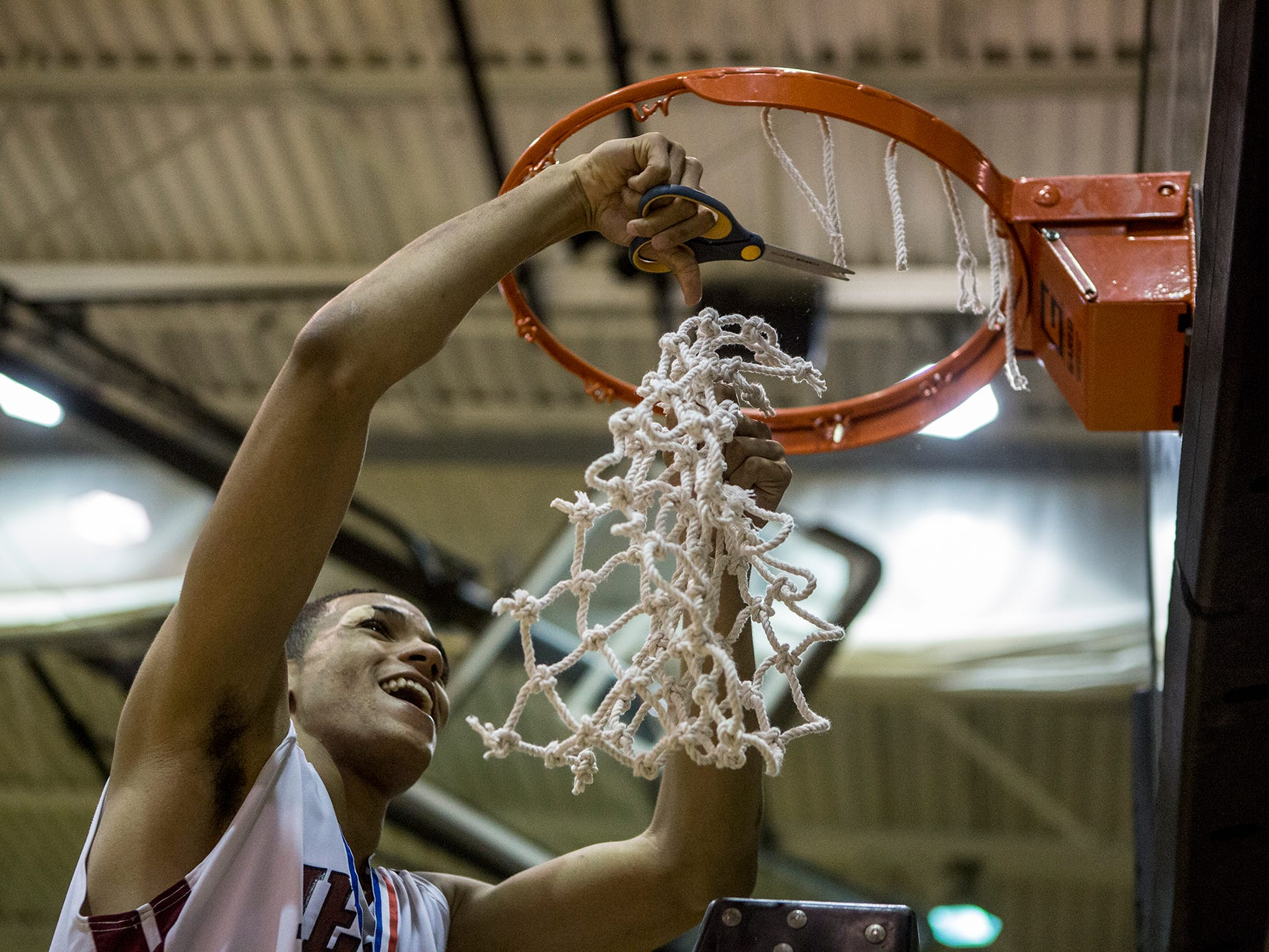 Newark senior Jordan Dartis cuts down the net after the Wildcats beat Tri-Valley for their first district title in seven years.