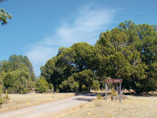 A U.S. Forest Service sign points the way to Baca Campsite. Once one arrives there, the remains of a stone fireplace can be seen. This fireplace was used in a building for the Roosevelt programs to help the nation in its time of need.