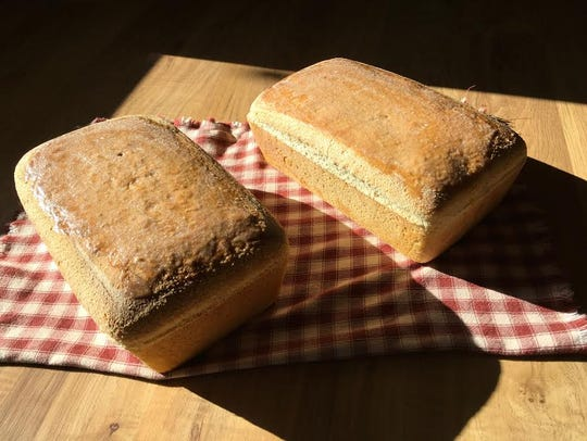 Loaves of Susan Schlabach's beautiful salt-rising bread