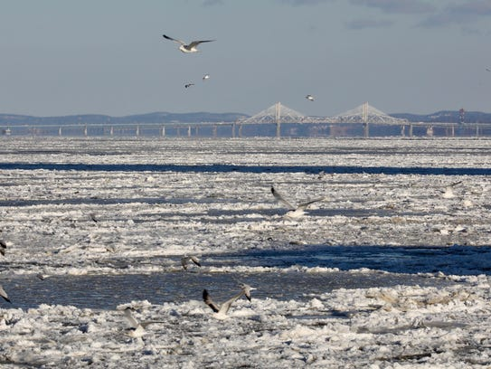 Seagulls fly over the frozen Hudson River with the