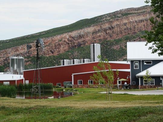 The Noosa Yoghurt factory in Bellvue.