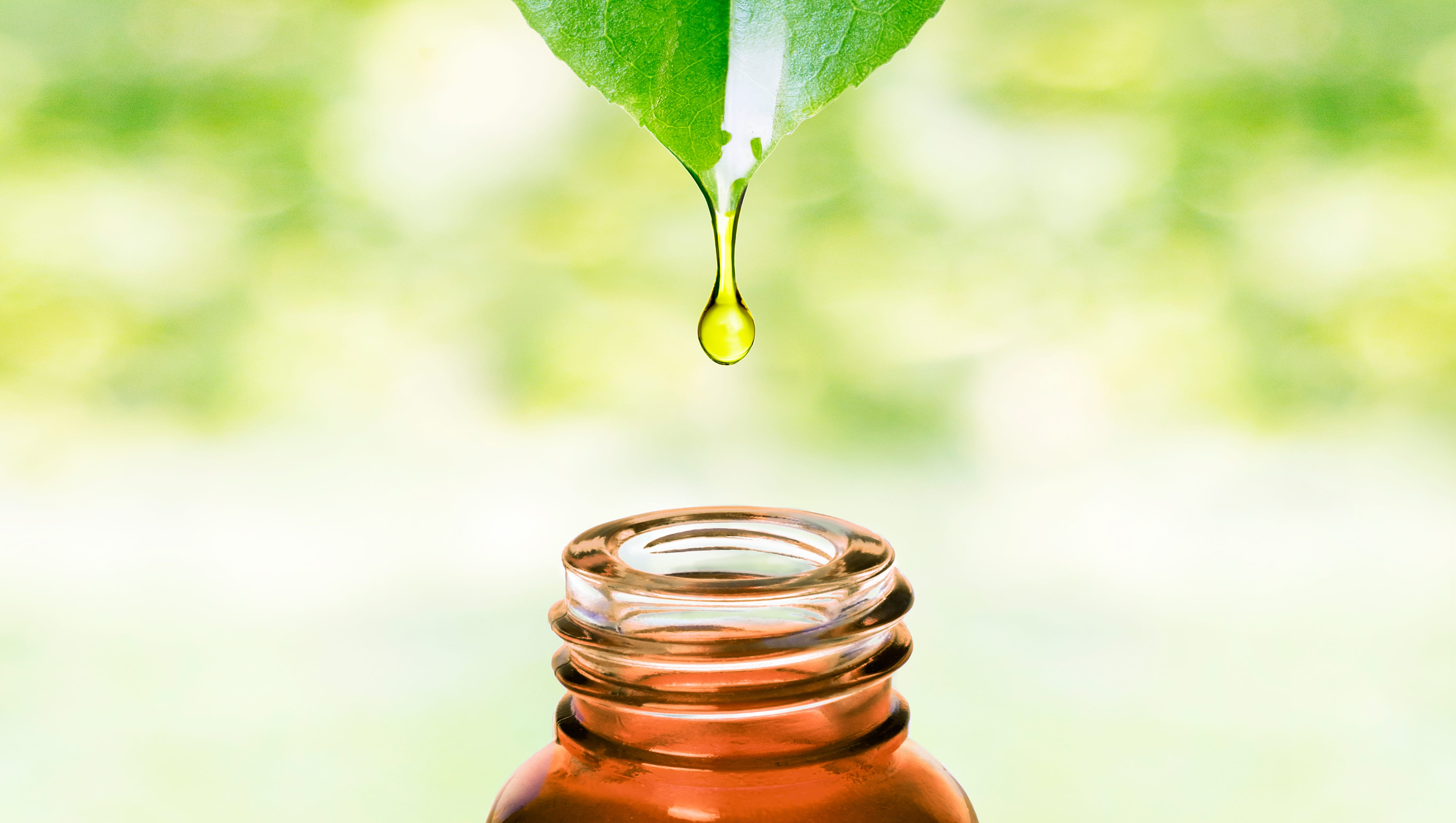 Essential Oil Guide What Oils To Use How To Use Them And Safety Tips