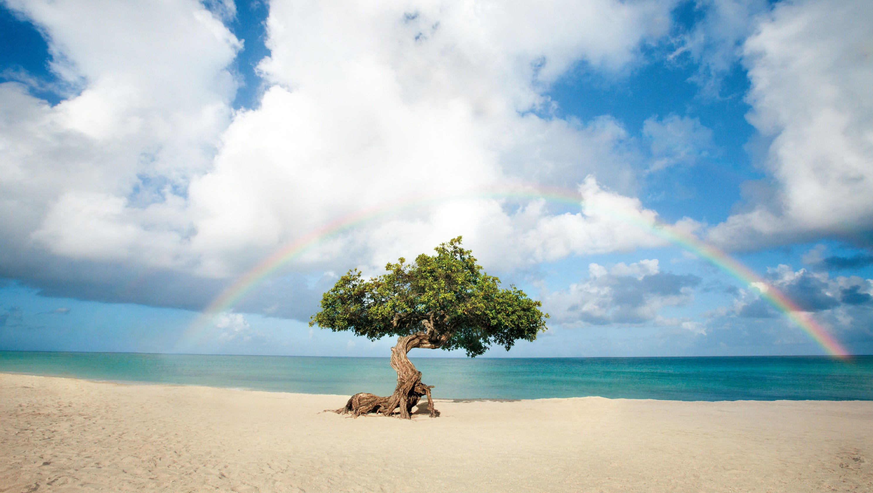 Explore The Beauty Of Caribbean: Beautiful Caribbean: Photo Tours Of The ABC Islands