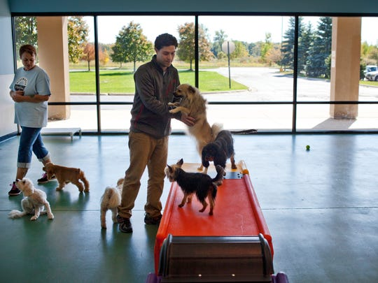 Kim Mackenzie and owner Chris Herbert watch over a group of dogs Wednesday at Blue Water Pet Care at the Port Huron Factory Shops in Kimball Township. About 60-percent of retail space at the outlet mall is occupied.