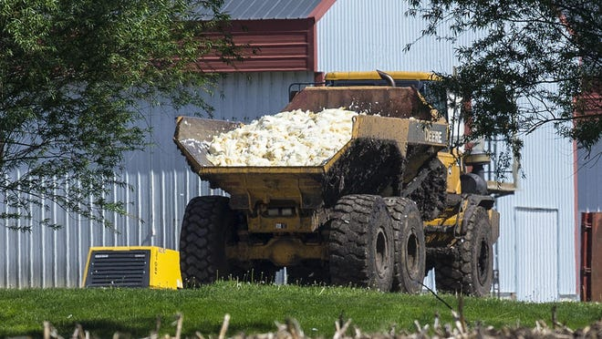 Dead chickens are hauled to be buried in a farm field near Rose Acre Farms on May 12, 2015. Rose Acre Farms was depopulating its Winterset egg-laying operation after the avian influenza virus was discovered there.