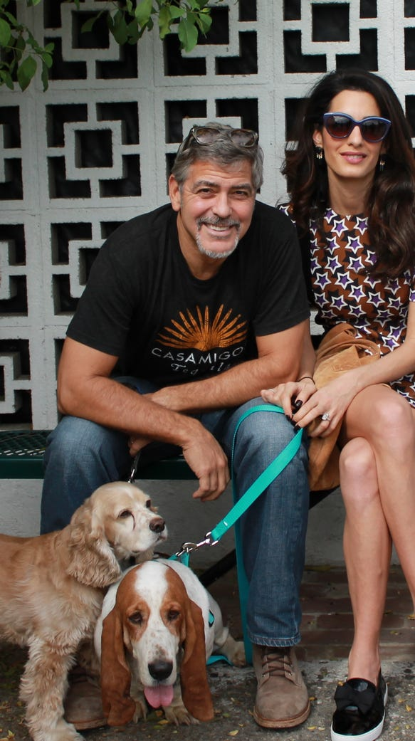 George and Amal Clooney at San Gabriel Valley Humane