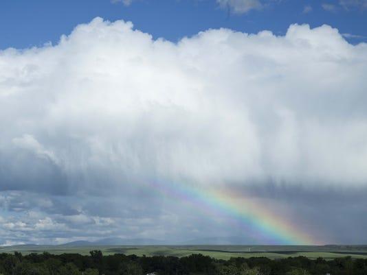 635997915426792682-rainbow-wild-art.jpg