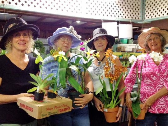 Calusa Garden Club members get ready for Feb. 18 orchid workshop.