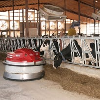 Robotic milking system helps bring a new generation into family dairy operation