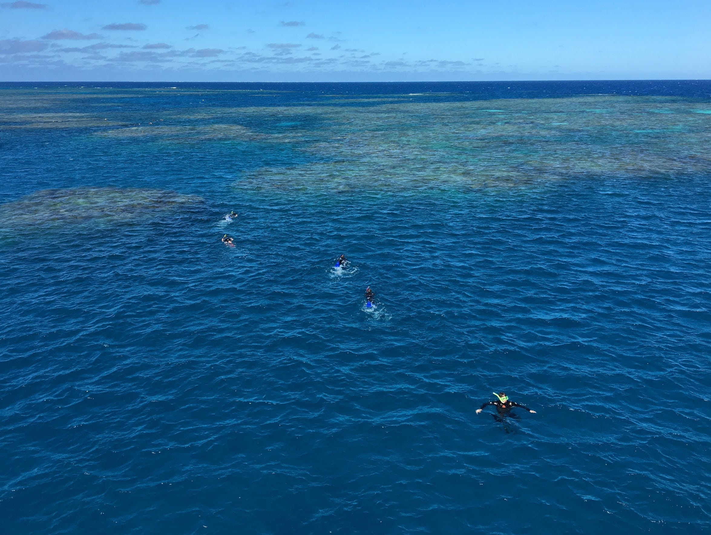 Snorkelers swim from a boat toward the Great Barrier