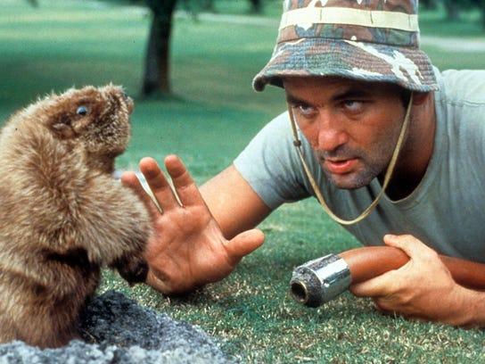 Bill Murray In 'Caddyshack'