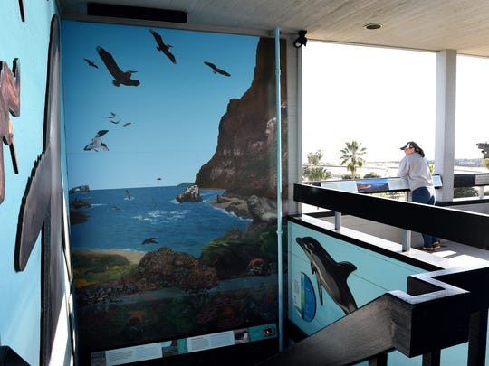 An ocean exhibit is displayed in the Channel Islands National Park visitor center at Ventura Harbor.