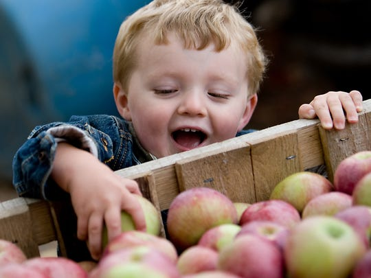 The Apple Festival and Craft Show at the Greater Bridgeton