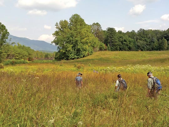 Students of Smoky Mountain Field School explore Cades Cove.